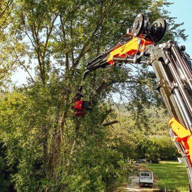 Pflege von Grünflächen mit Baumgreif-Säge