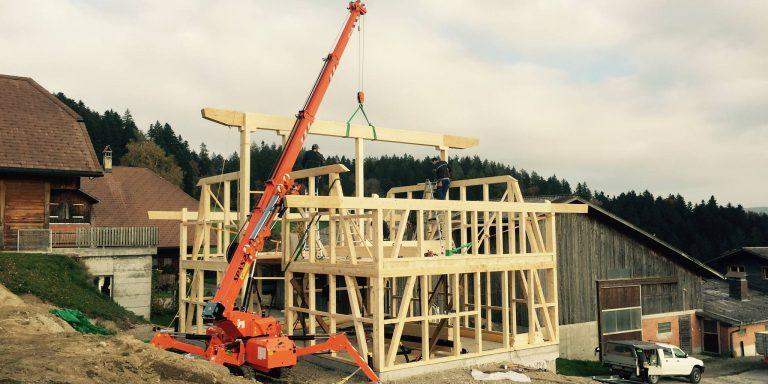Mini gru jekko per il sollevamento edilizia