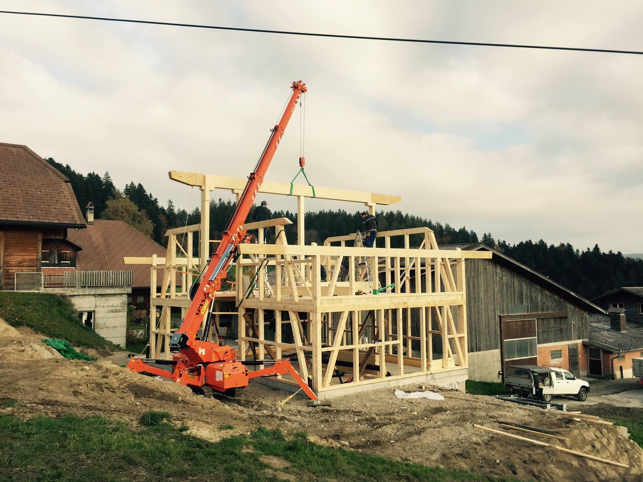 Minigru per la costruzione & edilizia